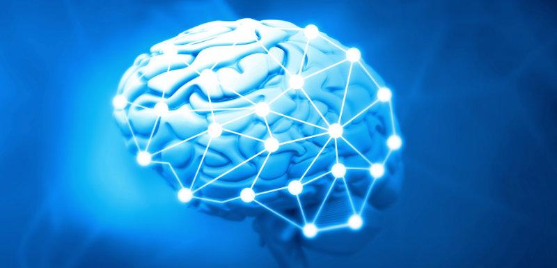 Chaque individu a une « carte » cérébrale unique !
